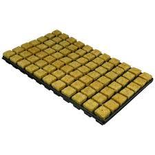 Stekkenblok Cultilene Plug 77 per tray