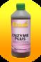 Ferron-Enzym-Plus