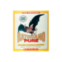 Bat-Guano-VleermuizenMest